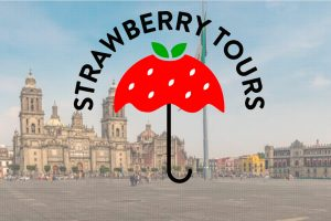 strawberry tours mexico